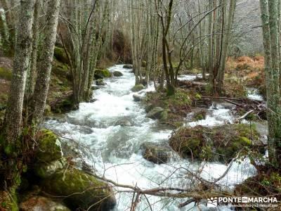 Valle del Ambroz-Sierra de Bejar - Gredos; excursiones de senderismo;viajes y excursiones;actividade
